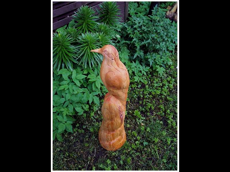 picture of finch carving