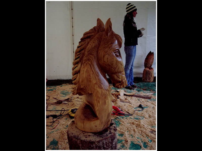 picture of horse bust carving