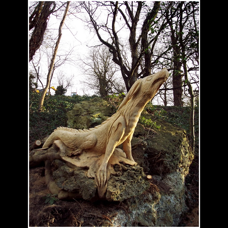 Chainsaw carving knaresborough dragon