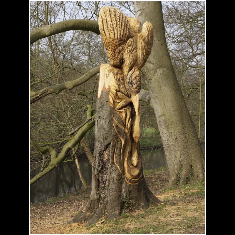 Chainsaw carving knaresborough kingfisher
