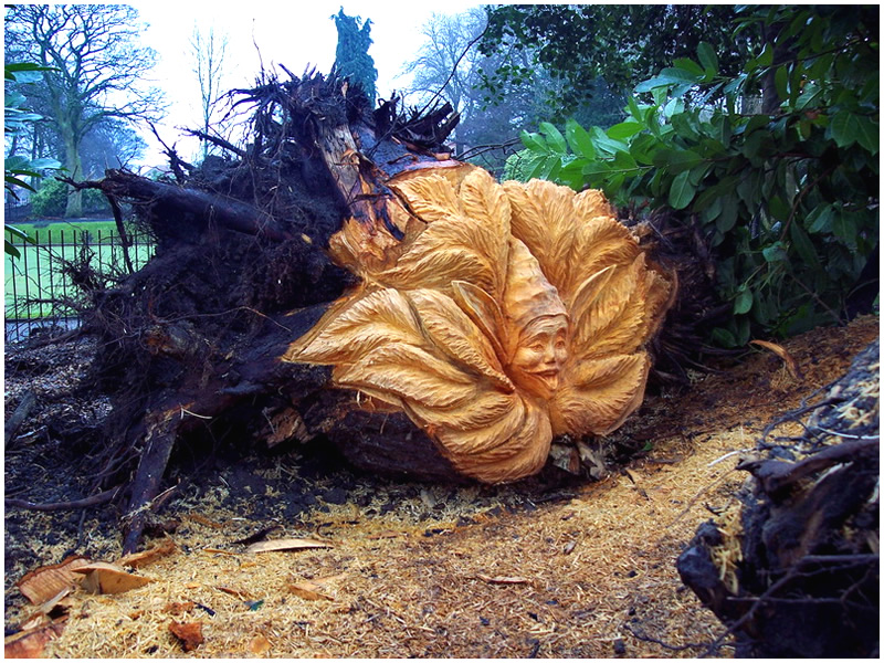 picture of pixie stump carving