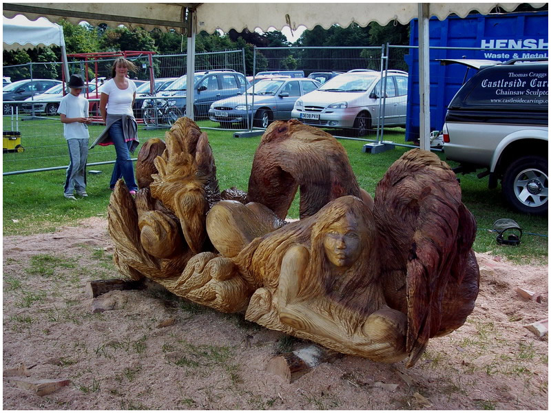 picture of tatton carving