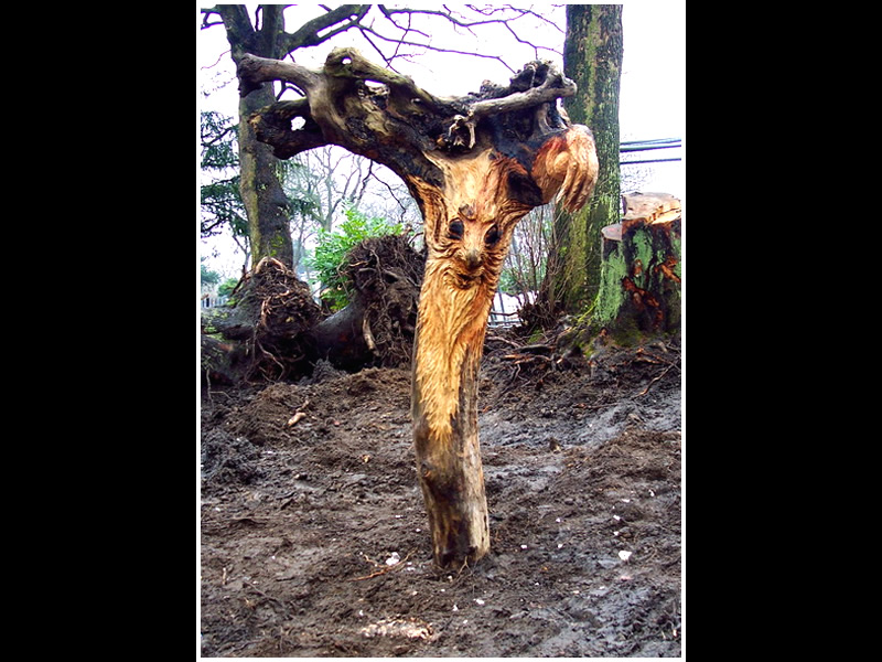 picture of tree root carving