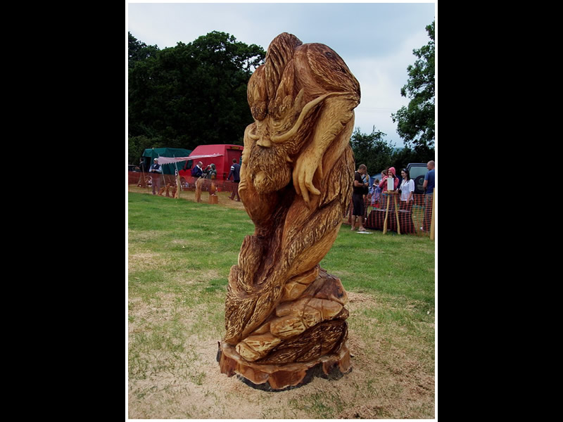 picture of woodfest